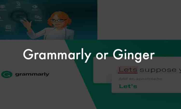 Grammarly or Ginger software