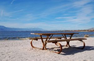 14917_salton_sea_old_picnic_table_on_beach_along_lake