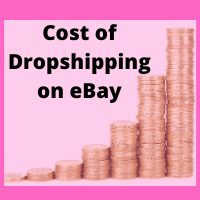 cost to start a dropshipping business