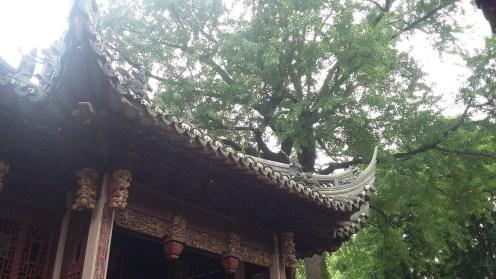 Yuyen Garden, Shanghai 18