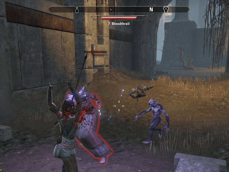 Elder Scrolls Online Battle Screenshot