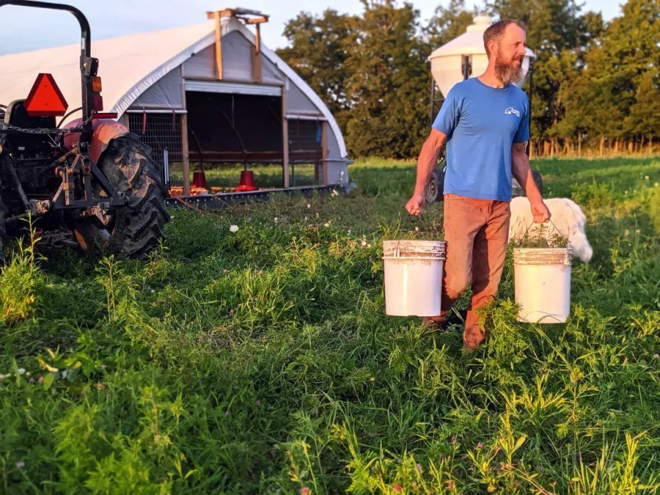 Farmer Dave carrying organic chicken feed to our pasture raised chickens.