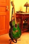 Kermit the guitar