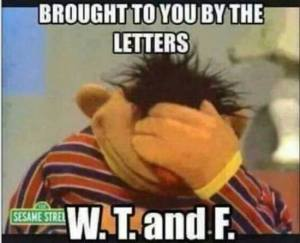 "Photograph of Ernie from Sesame Street with his head hung low and a hand over his face and the words ""Brought to you by the letters W. T. and F."""