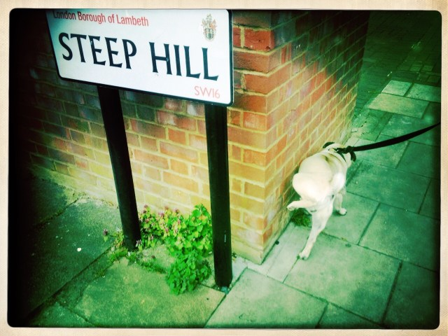 Steep Hill