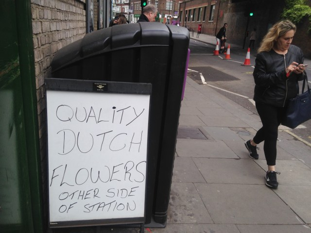 quality dutch flowers