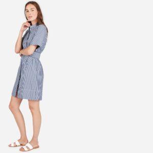 Everlane Belted Striped Dress