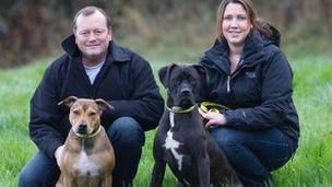 Brandy e Pudding com seus novos donos, um ano depois (foto: Dogs Trust)