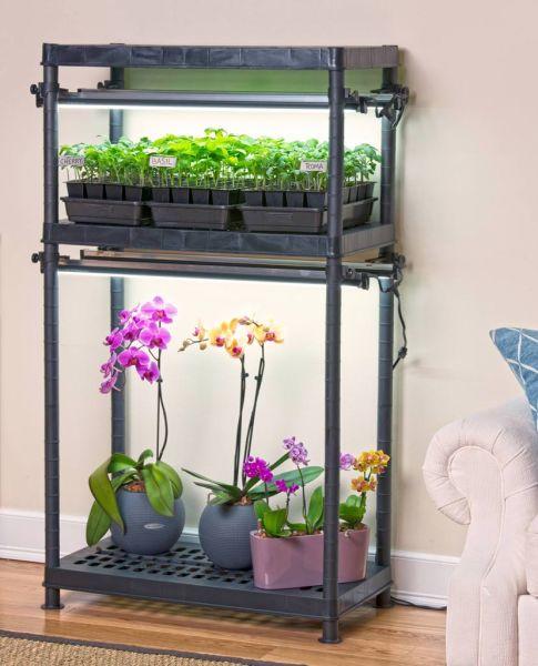 indoor gardening lights WSHG.NET BLOG | Homegrown Flavor from an Indoor Garden