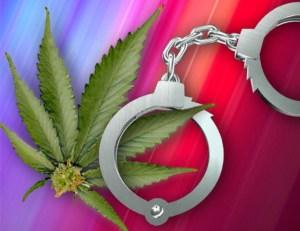 Marijuana-bust