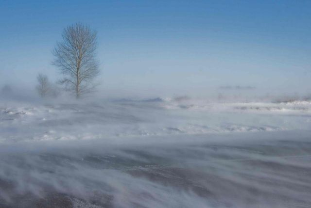 Blowing-Snow-Web