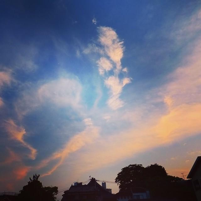 ここんとこ振り回されて、モヤモヤして散歩。気持ちを表すかのような夕空でした。風が気持ちよくて気分も復活です。#イマソラ #mysky #sky #evening #sunset #cloud #fine #wind