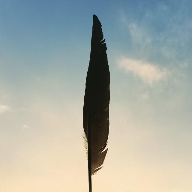 梅雨の晴れ間に。とある通行チケットを拾った。嗚呼、カラスが騒ぐこと。#イマソラ #mysky #sky #fine #wing #crow #sunset #evening