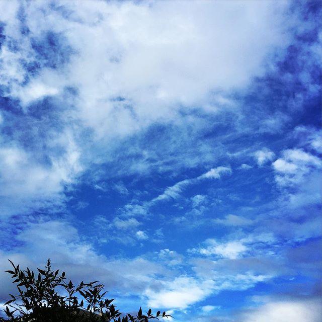 まだウチは梅雨明けしてなくて、雨が降ったり晴れたり。お陰でそんなに暑くなくて、扇風機の風が心地いい。うとうとと、昔の日本らしい夏を楽しむ。#イマソラ #mysky #sky #blue #cloud #cloudy #summer