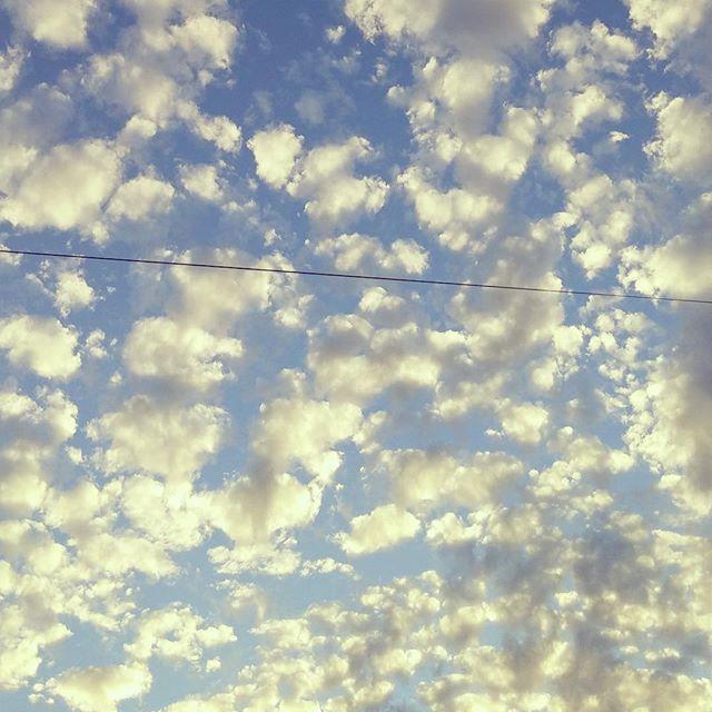 ふと、空を見上げたら、黄金の羊たちが帰る夕暮れでした。今日もお疲れ様でした。#イマソラ #mysky #sky #cloud #sunset #gold #sheep #もこもこ #おつかれさま
