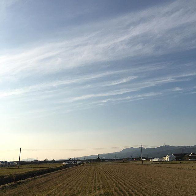 あたたかく、穏やかな、午後です。#イマソラ #mysky #sky #fine #warm #winter