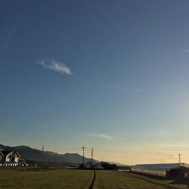 今日も暖かく、わが道は続くのであった。#イマソラ #mysky #sky #blue #fine #cloud #sunset #road #country