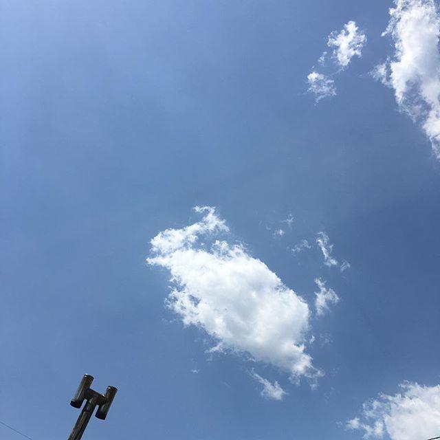 うさぎがぴょんと。今日はいい天気です。強い風も心地いい!#イマソラ #mysky #sky #fine #blue #clouds #rabbit #chimney