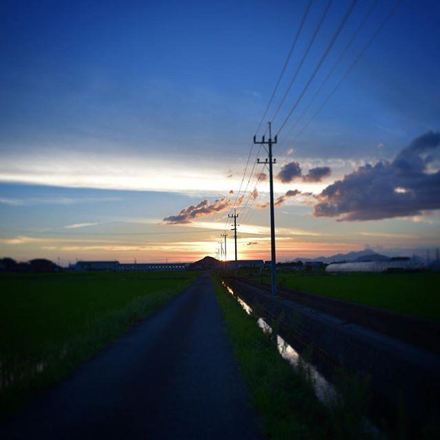 梅雨も明け、美しい夕焼けでした。思わず車を走らせて、まぶしかった。道の向こうには大好きな海があります。また明日。#イマソラ #mysky #sky #fine #sunset #evening #cloud #field #july #summer