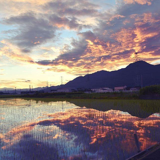 おはようございます。今朝は朝焼けに小さな虹も出ていました。ウユニ塩湖みたいな不思議な写真になりました。今日も体に気をつけてお過ごしください。#イマソラ #mysky #sky #dawn #morning #mirror #water #cloud #fine #field #mountain #summer