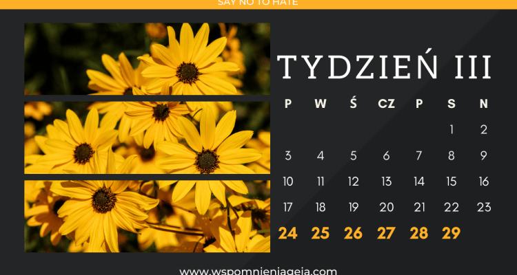 Wspomnieniageja.com Luty, codziennik tydzień trzeci.