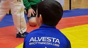«Альвеста» отличился на Кубке Дана