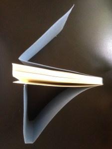 Double-fan glue binding