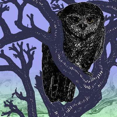 """""""Owl"""" Digital collage, 12""""x12"""", 2016. Tate Klacsmann"""
