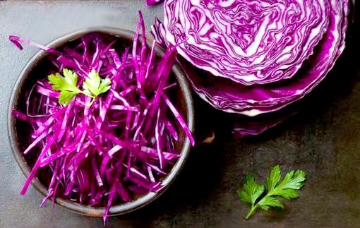紫色食物p1151-a5-01a