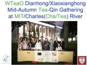 wteao-org-dianhong2