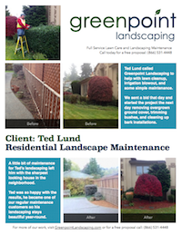 Greenpoint Landscaping - Case Study