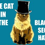 The Cat in the Black SEO Hat