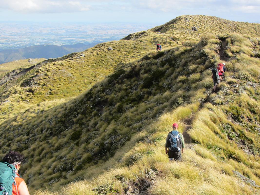 Tararua Range – Wellington Tramping and Mountaineering Club