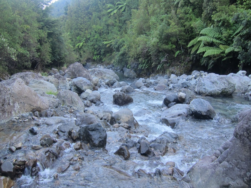 Penn Creek in the Tararua Ranges