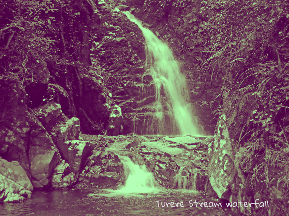 Turere Stream Waterfall