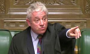 'Biased Speaker' Bercow quits as Tories brand him 'nauseating w****r'