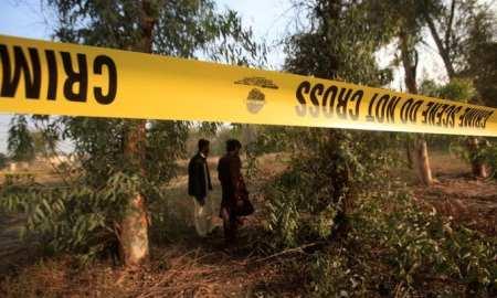 Lion attacks in Pakistani Safari park