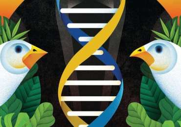 Darwin's Evolutionary Theory Could Help Fight Cancer