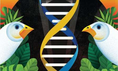 How Darwins theory of evolution is helping against the fight for cancer