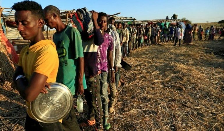 More than 5m people in Tigray need emergency food aid