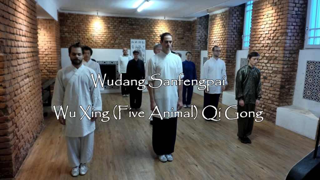 Wu Xing (Five Animal) Qi Gong Class - 21.10.2017