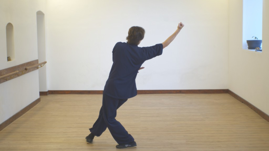 Master Ziji Xuan Gong Quan