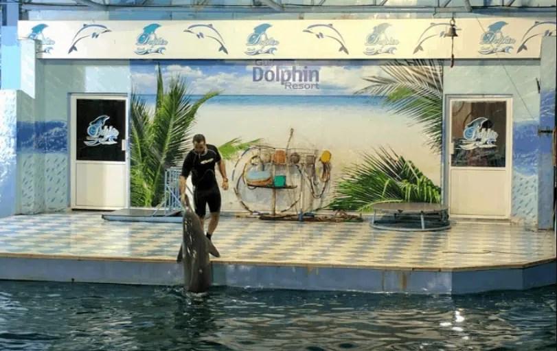 كورنيش المارينا البحرين