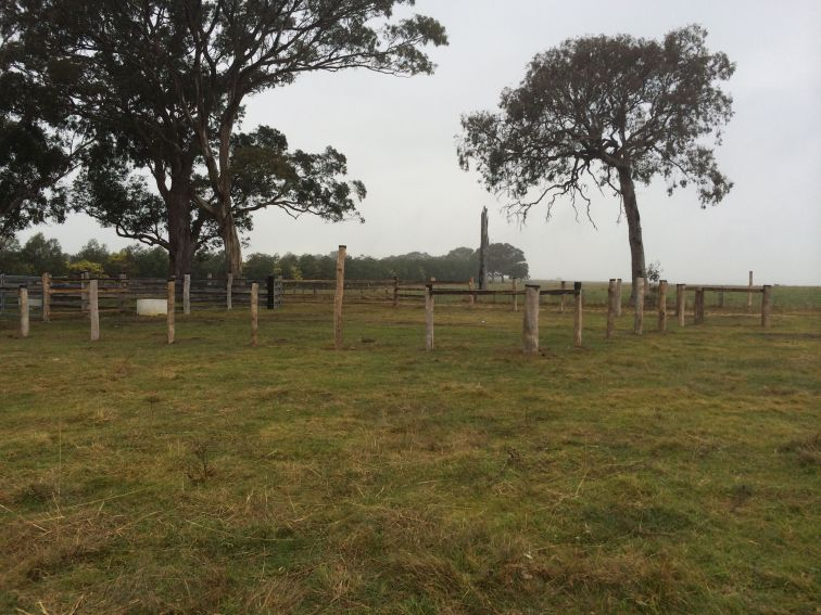 Used post and wire for the main holding pen