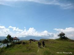walking on the hald green grass