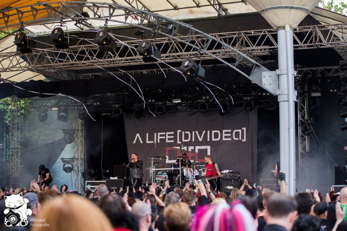 amphi2013_alifedivided_24.jpg