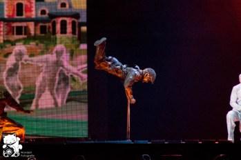 mj_cirque_42.jpg