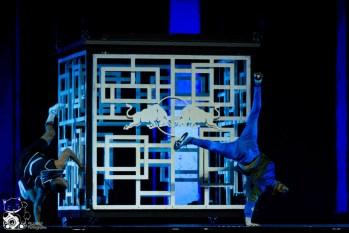Red Bull Flying Illusion 2014