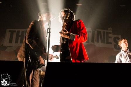 The Libertines 2014