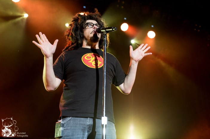 Counting Crows 2014